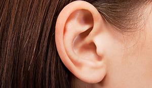 「聴覚に訴える」